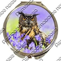 Зеркало серебро Совы вид 1