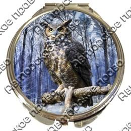 Зеркало серебро Совы вид 2