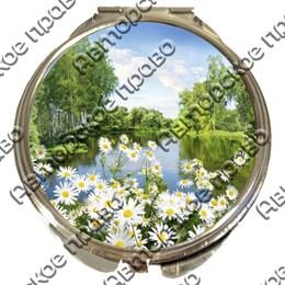 Зеркало серебро Природа