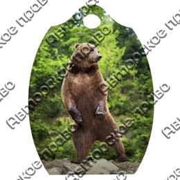 Доска со смолой Медведь вид 6
