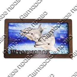Купюрница вид 4 Дельфины с символикой Штормовое