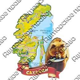 Магнит Медведь с картой и символикой Сахалина вид 2