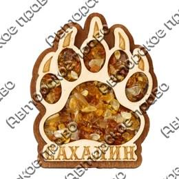 Магнит с янтарем Лапа медведя с символикой Сахалина