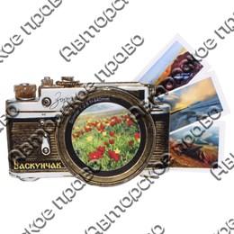 Магнит с тиснением золотой фольгой Фотоаппарат с символикой Вашего города