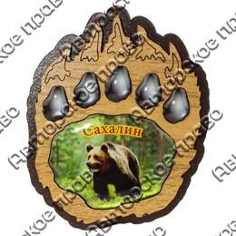 Магнит со смолой Лапа медведя с символикой Вашего города