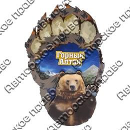 Магнит Лапа медведя вид 1 с видами Горного Алтая