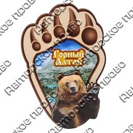 Магнит Лапа медведя вид 2 с видами Горного Алтая