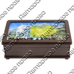 Купюрница вид 4 Карта и снежный барс символикой Горного Алтая