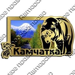 Магнит на холодильник зеркальный с картинкой Медведь вид 1 с символикой Камчатки