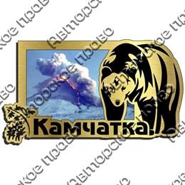 Магнит на холодильник зеркальный с картинкой Медведь вид 3 с символикой Камчатки