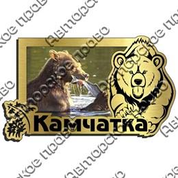 Магнит на холодильник зеркальный с картинкой Медведь вид 5 с символикой Камчатки