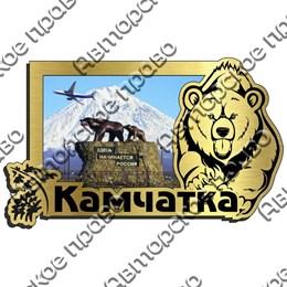 Магнит на холодильник зеркальный с картинкой Медведь вид 7 с символикой Камчатки