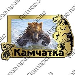 Магнит на холодильник зеркальный с картинкой Медведь вид 9 с символикой Камчатки