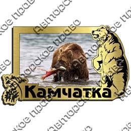 Магнит на холодильник зеркальный с картинкой Медведь вид 8 с символикой Камчатки