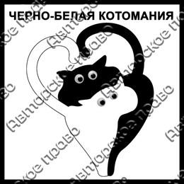 Магнит черно-белый с подвижными глазками Котейки вид 32