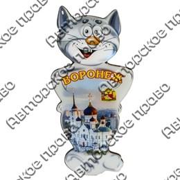 Магнит сувенирный со смолой Кот вид 2 с символикой Вашего города