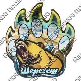 Магнит сувенирный со смолой Лапа медведя с символикой Вашего города