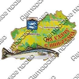 Сувенирный магнит Карта Вашего региона, края или области с рыбой