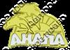 Магнит Дельфины с названием Вашего города и комбинированным элементом Буквы - фото 36724