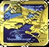 Магнит Карта с видами Вашего города Квадратный зеркальный золото - фото 36738