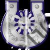 Магнит Подкова с солнышком и названием Вашего города зеркальный серебро-синий - фото 36750