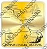 Магнит Карта Вашего региона с гербовой символикой Прямоугольный зеркальный золото - фото 36990