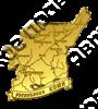 Магнит Карта Вашего региона на ленте зеркальный золото - фото 37004