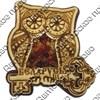 """Магнит с янтарем """"Сова с ключом"""" с символикой Вашего города - фото 54368"""