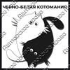 Магнит черно-белый с подвижными глазками Котейки вид 10 - фото 55575