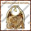 Магнит с янтарем Слон вид 1 - фото 55654