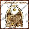 Магнит с янтарем Слон вид 1 - фото 55655