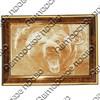 Картина 30х20см с гравировкой Медведь вид 3 с символикой Вашего города - фото 58131