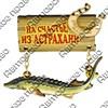 Магнит качели Осетр с зеркальной фурнитурой и символикой Астрахани - фото 61237