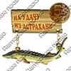 Магнит качели Осетр с зеркальной фурнитурой и символикой Астрахани - фото 61238
